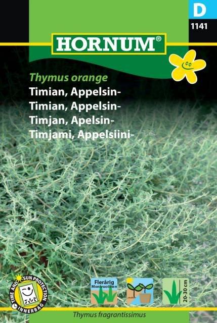 Timian, Appelsin-, Thymus Orange (D)