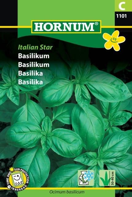 Basilikum, Italian Star
