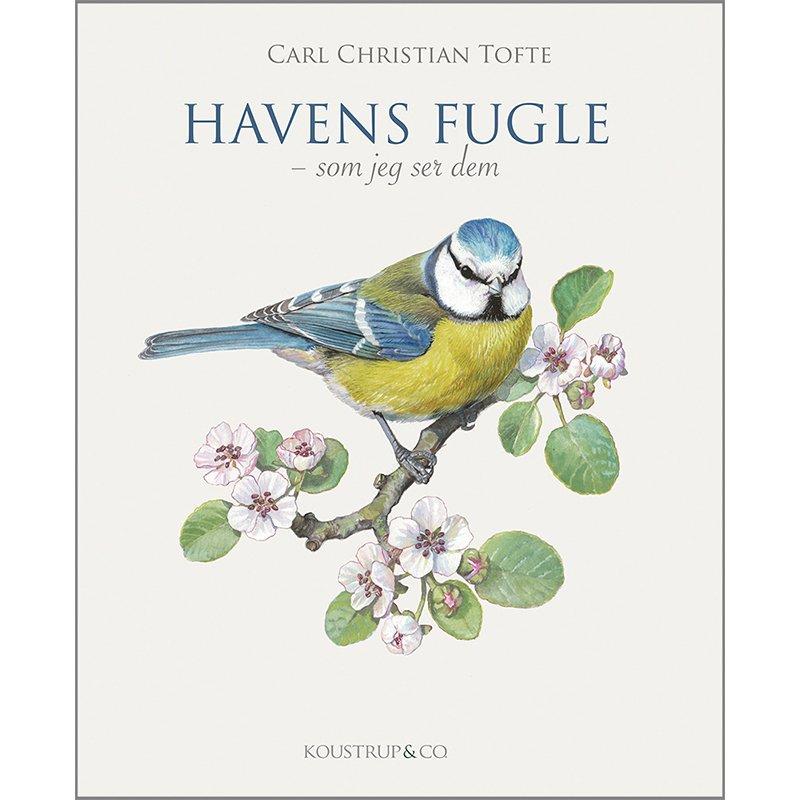 Bog: Havens fugle - som jeg ser dem