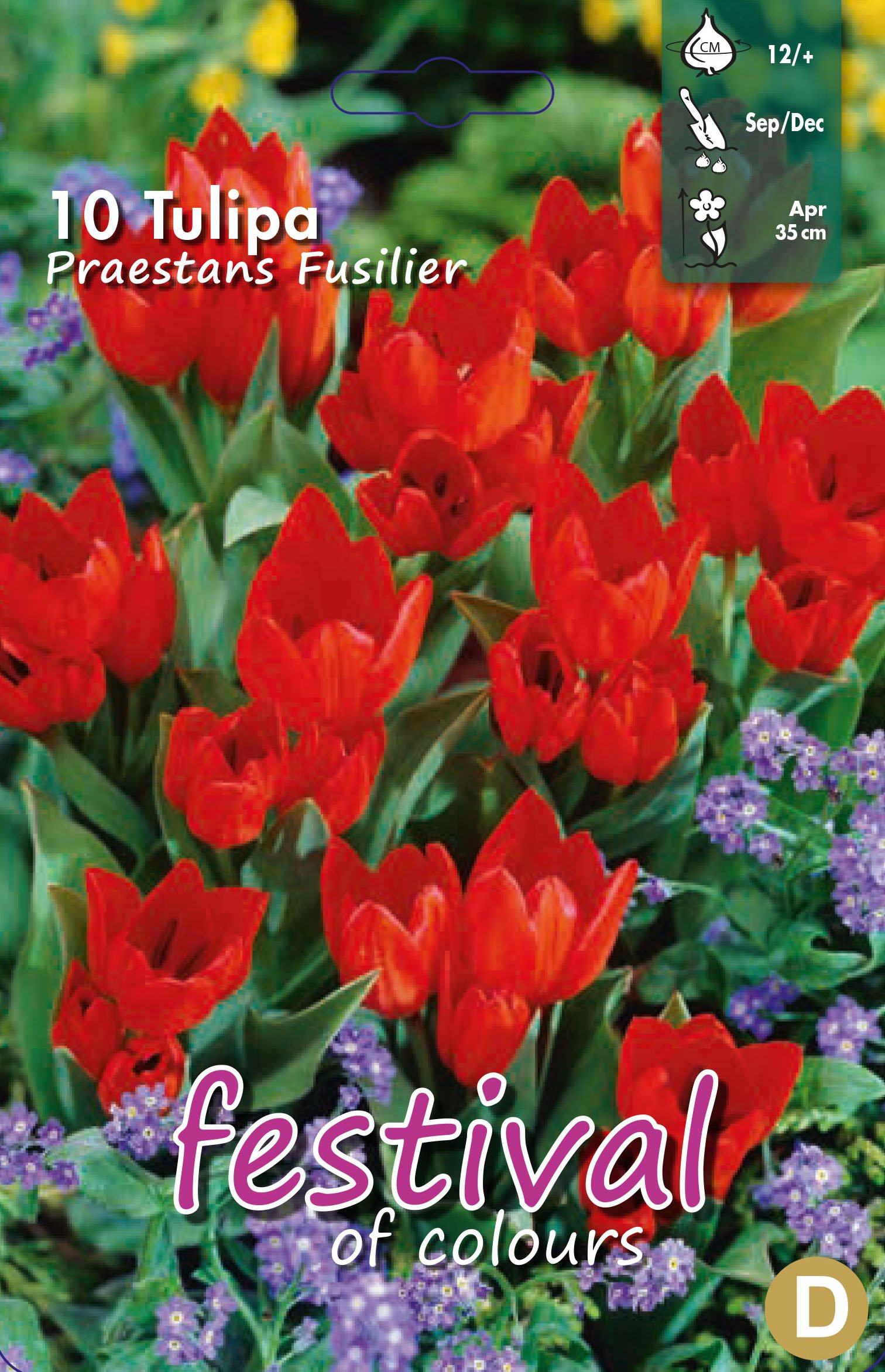 Tulipa Praestans Fusilier 10 stk