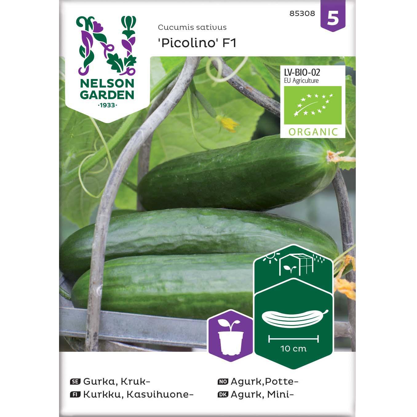 Agurk, Mini-, Picolino F1, Organic