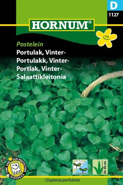 Portulak, Vinter-, Postelein (D)
