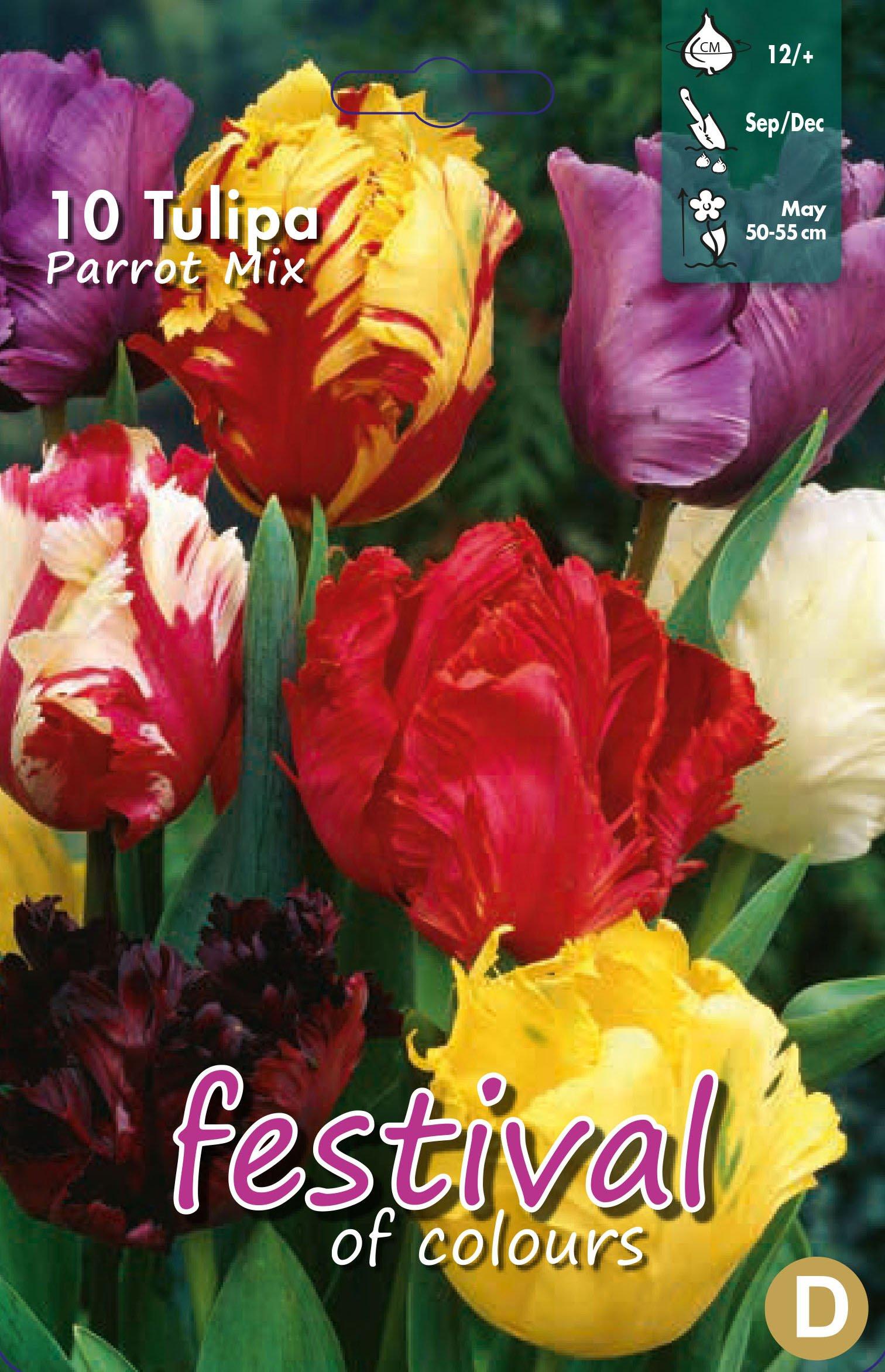 Tulipa Parrot Mix 10 stk