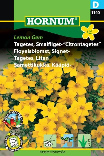 """Tagetes, Smalfliget- """"Citrontagetes"""" (D)"""