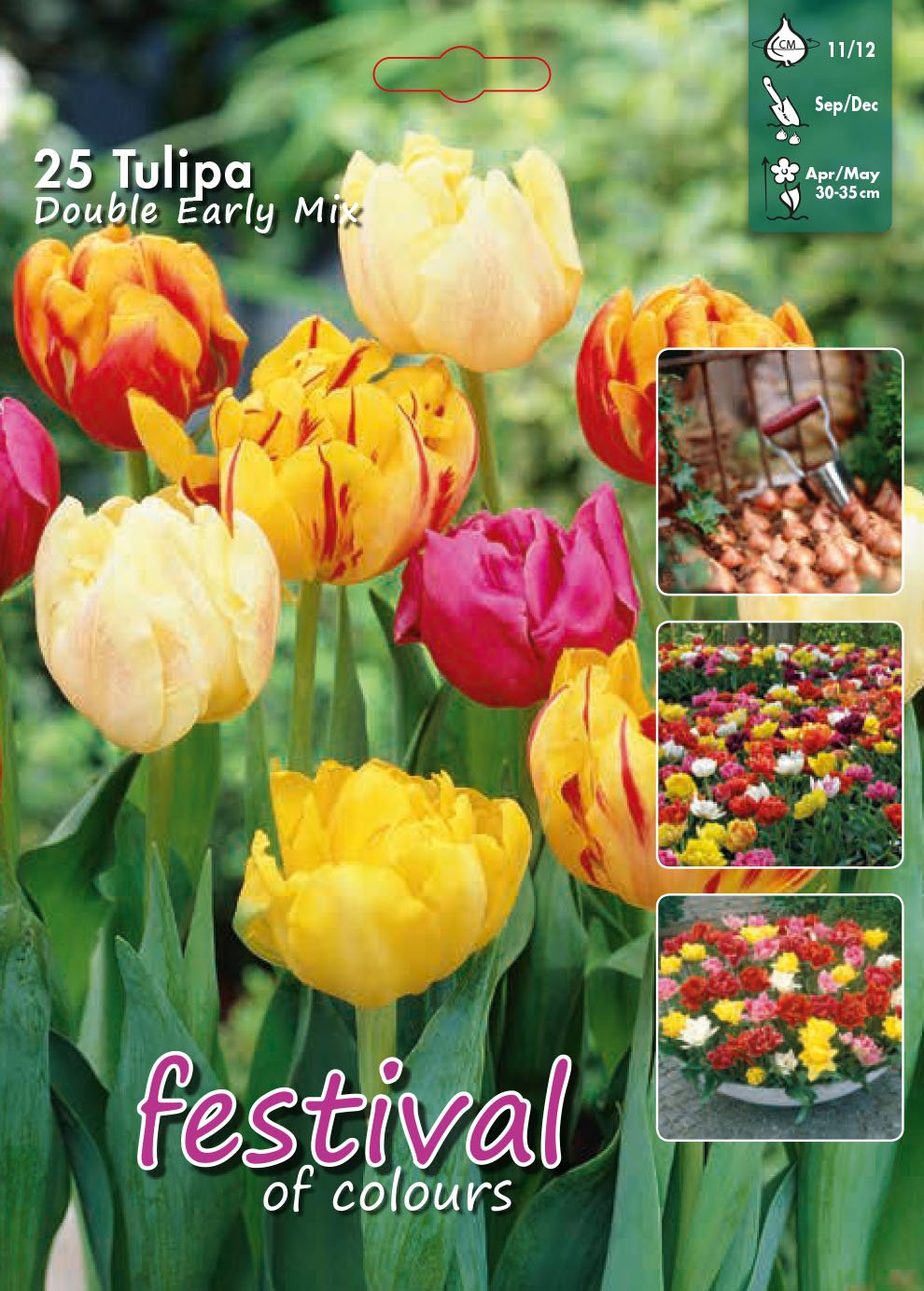 Tulipa Double Early Mix 25