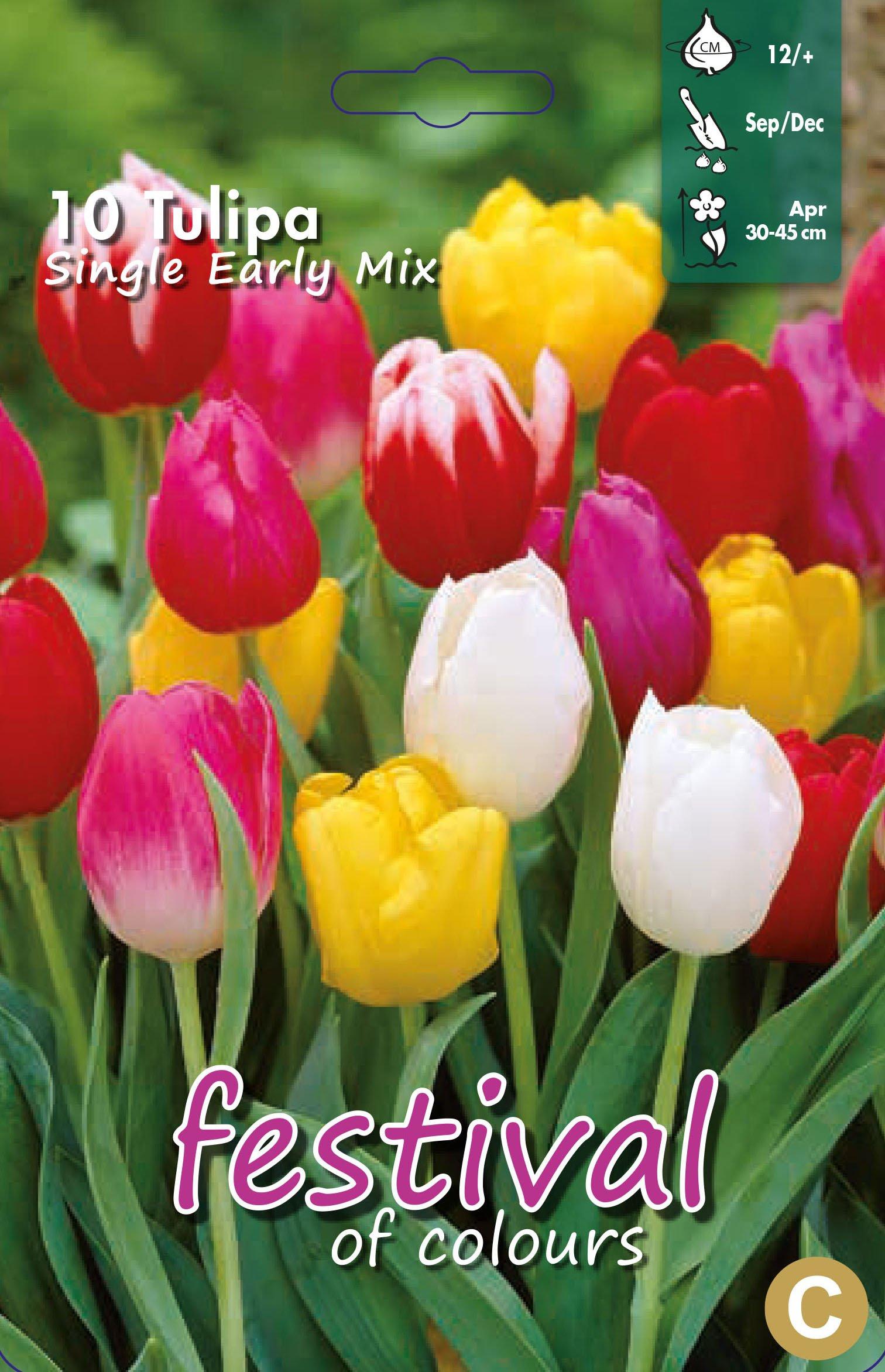 Tulipa Single Early Mix 10 stk