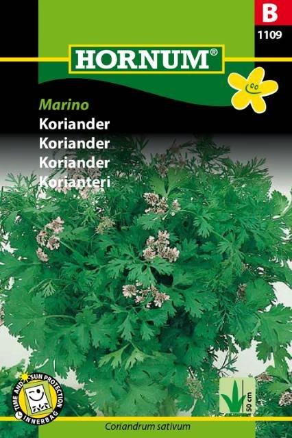 Koriander, Marino (B)