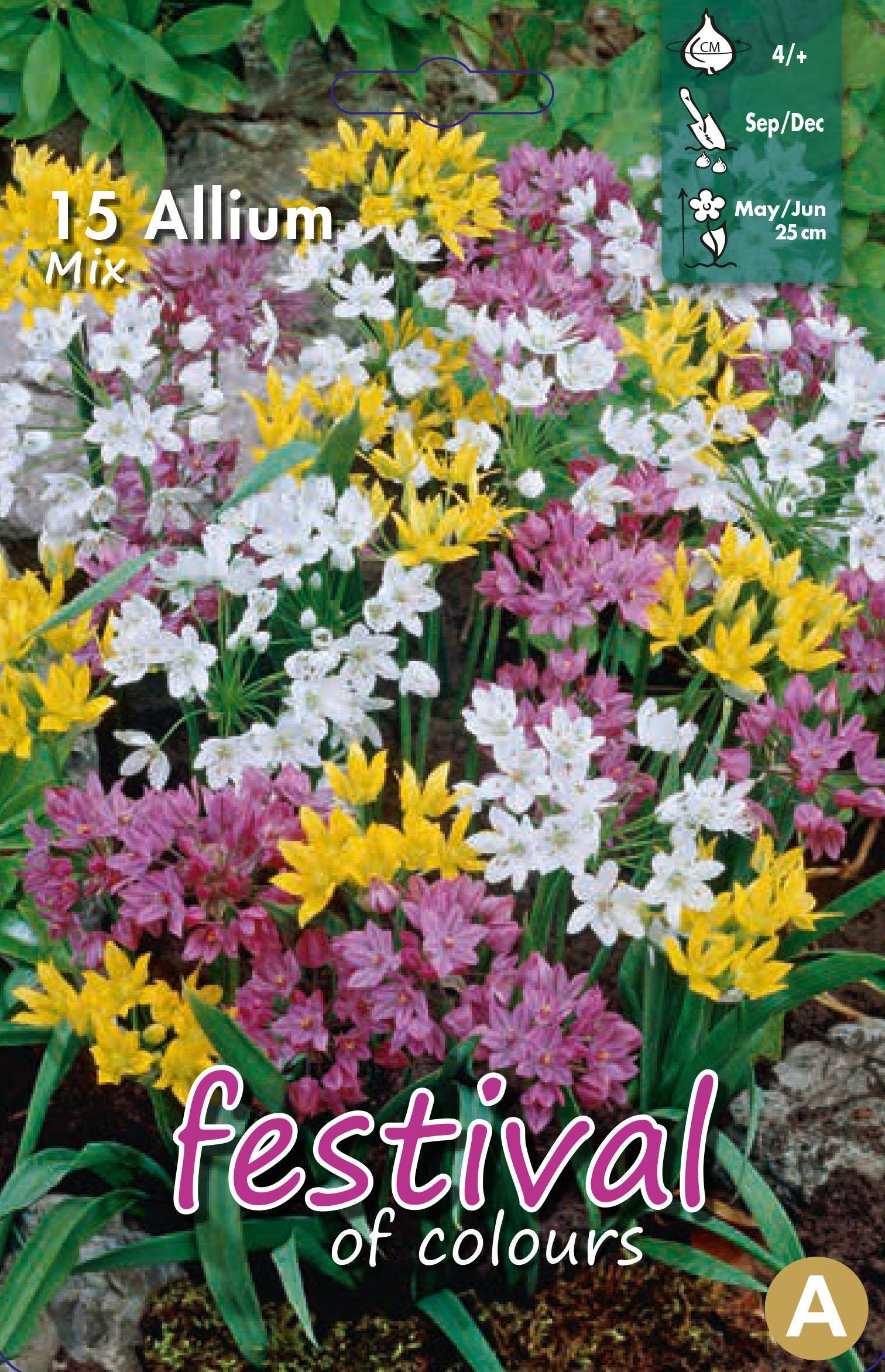 Allium Mix 15 stk
