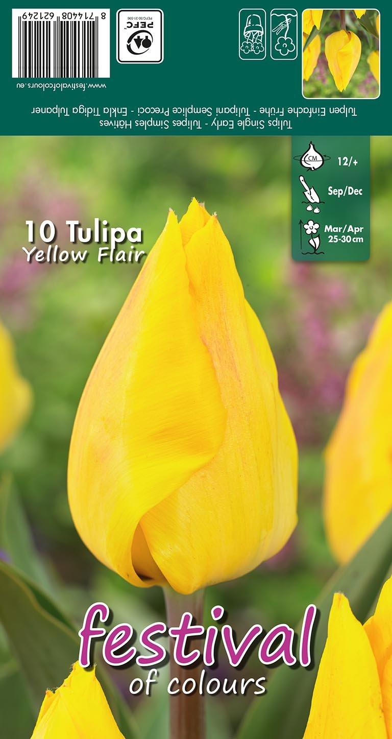 Tulipa Yellow Flair 10 stk