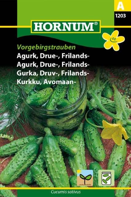 Agurk, Drue-,Frilands