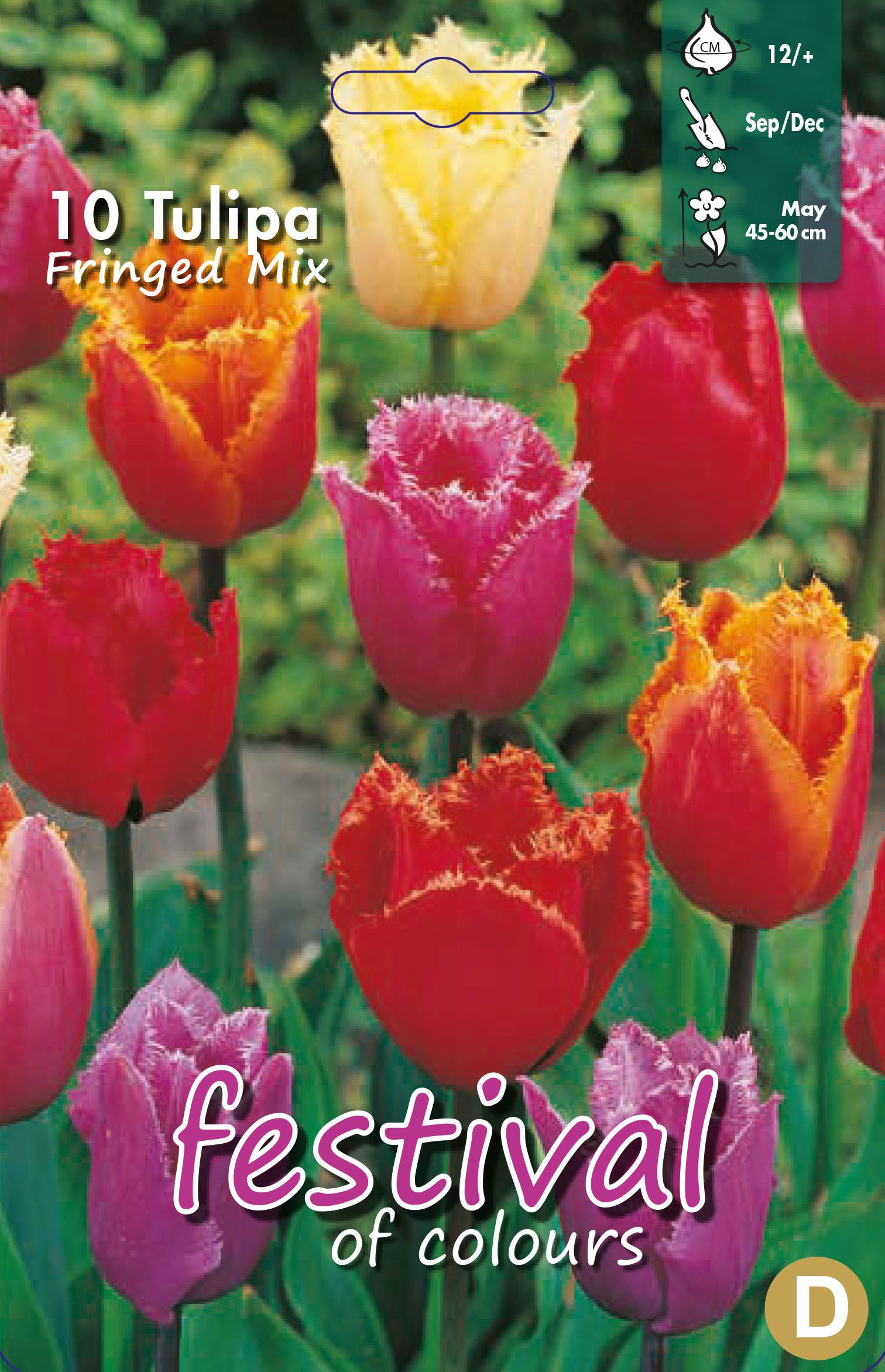 Tulipa Fringed Mix 10 stk