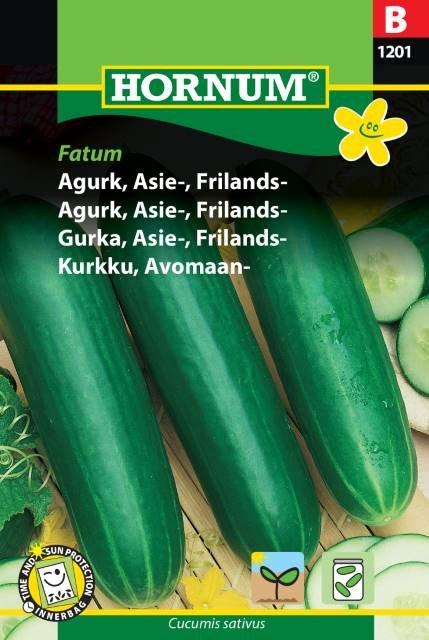 Agurk, Asie-, Frilands-, Fatum (B)