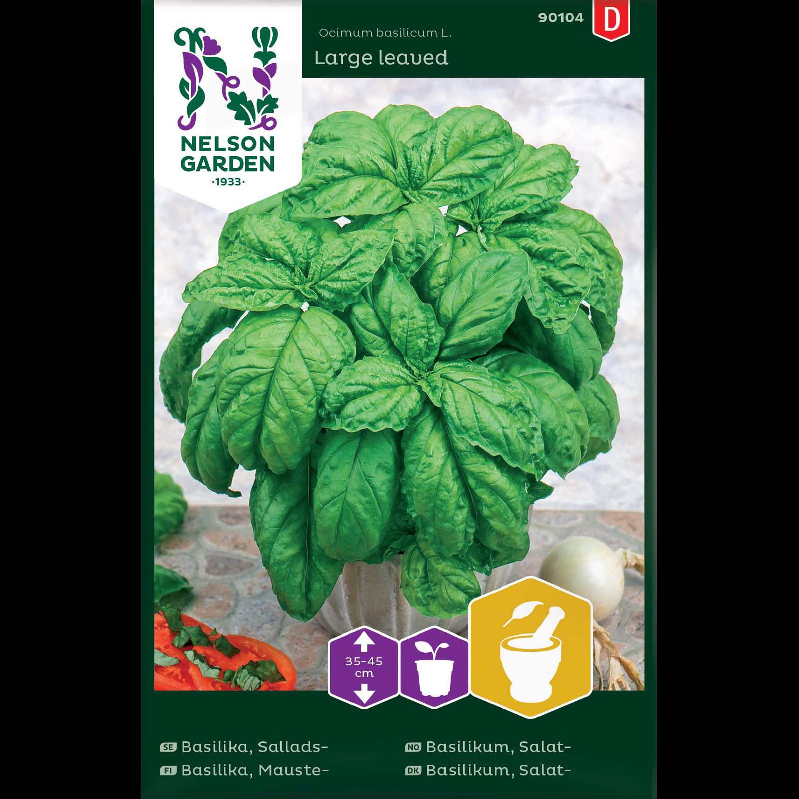 Basilikum, Salat-