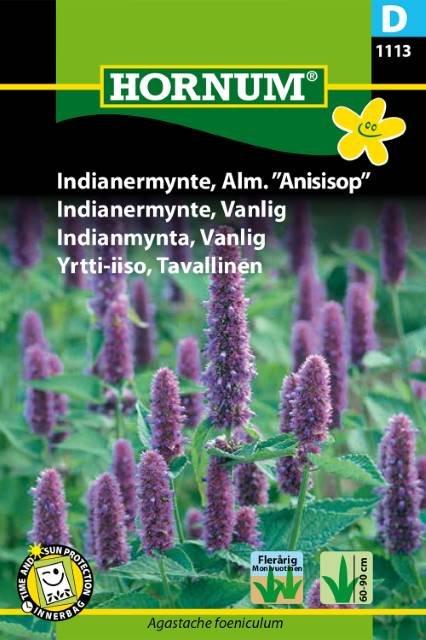"Indianermynte, Alm. ""Anisisop"" (D)"