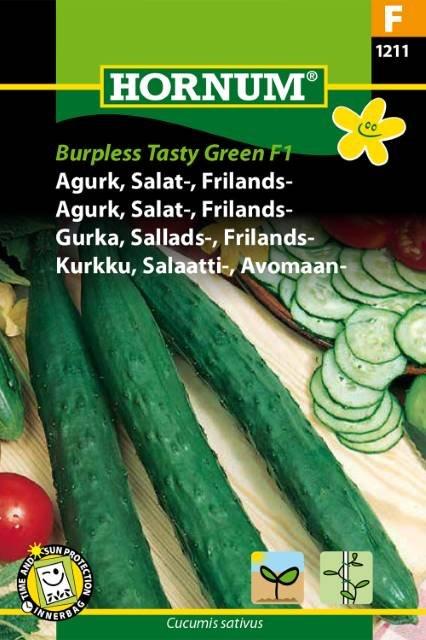 Agurk, Salat-, Frilands-, Burpless (F)