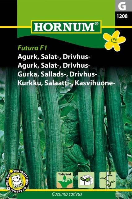 Agurk, Salat-, Drivhus-, Euphya F1 (G)